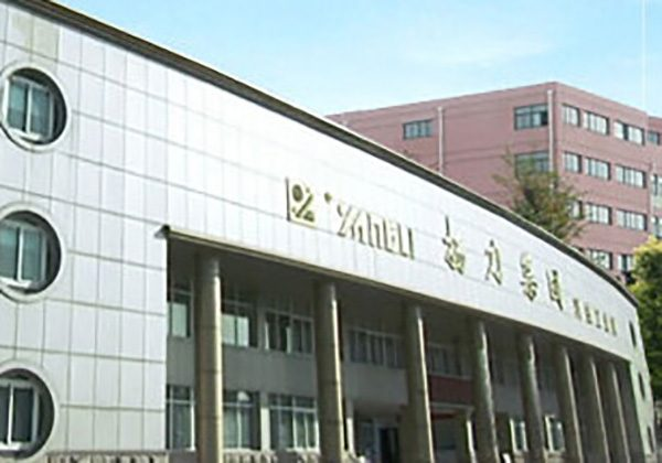 Jiangsu Yangli Group (Китай) была основана в конце прошлого столетия.